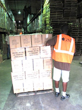 GSI Warehouse Worker With Pallet